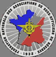 Logo fnasor